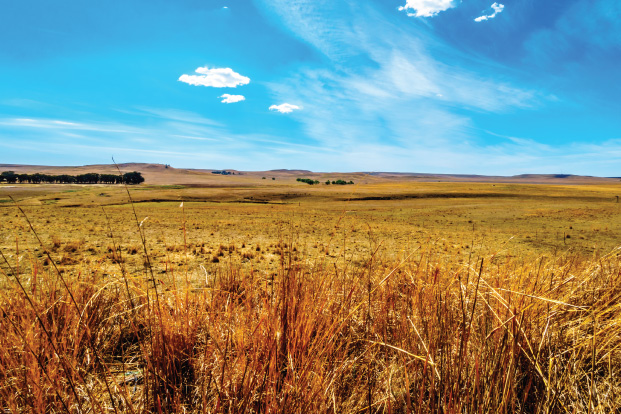 Pakhouse-Agriculture-South-Africa